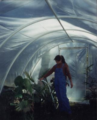 free pvc greenhouse plans - ACF Greenhouses - Best deals on