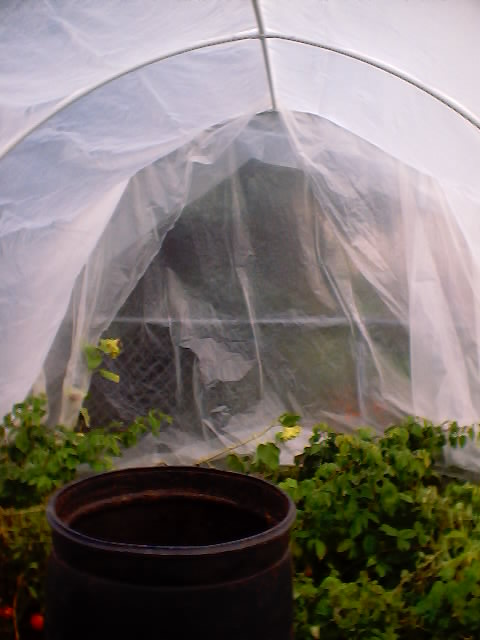 Build A Pvc High Tunnel Greenhouse