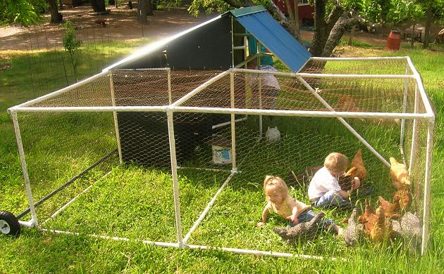 Free plans pastured poultry chicken coop pen for Pvc chicken tractor plans